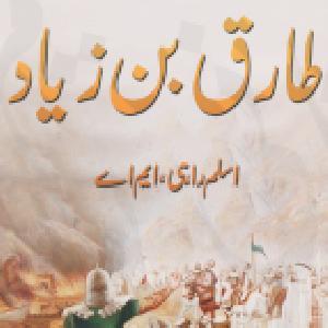 Tariq Bin Ziyad    Free download PDF and Read online