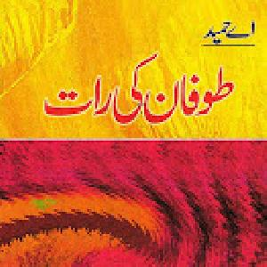 Toofan Ki Raat   Free download PDF and Read online