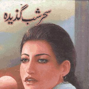 Sehr Shab Gazida    Free download PDF and Read online