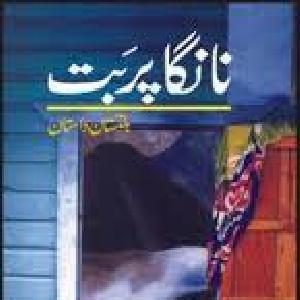 Nanga Parbat   Free download PDF and Read online