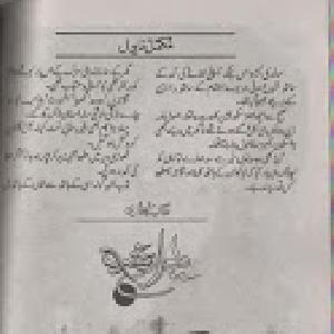 Dewar E Shab    Free download PDF and Read online