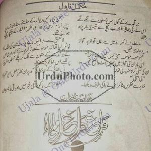 Dagh Dagh Ujala    Free download PDF and Read online
