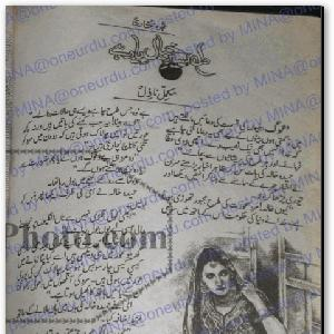 Dil Aseer e Khayal Hai    Free download PDF and Read online