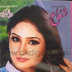 Shuaa Digest January 2011   Free download PDF and Read online