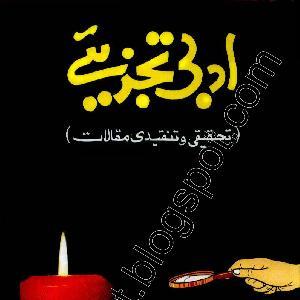 Adbi Tajzeeye     Free download PDF and Read online