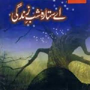 Aye Sitara E Shab E Zindagi   Free download PDF and Read online