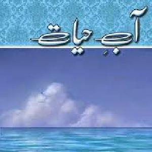 Aab E Hayat Episode 05    Free download PDF and Read online
