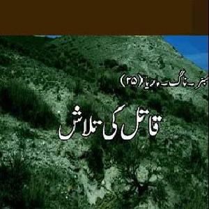 Amber Naag Maria Series Part Hameed   Free download PDF and Read online