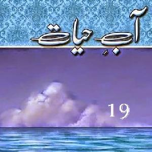 Aab E Hayat Episode 19   Free download PDF and Read online