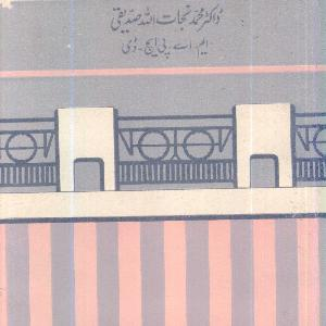 Ghair Soodi Bankari   Free download PDF and Read online
