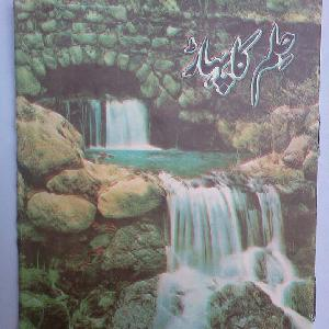 Hilm Ka Pahaar   Free download PDF and Read online