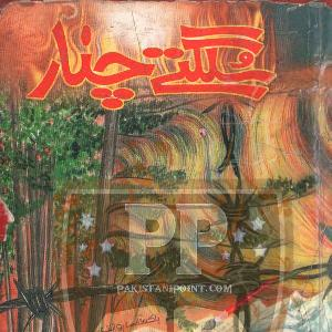 Sulagtay Chnar    Free download PDF and Read online