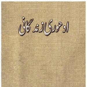 Adhoori Zindagi   Free download PDF and Read online